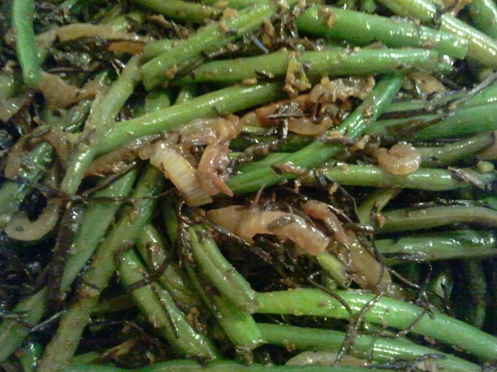 Gingered Green Beans with Arame