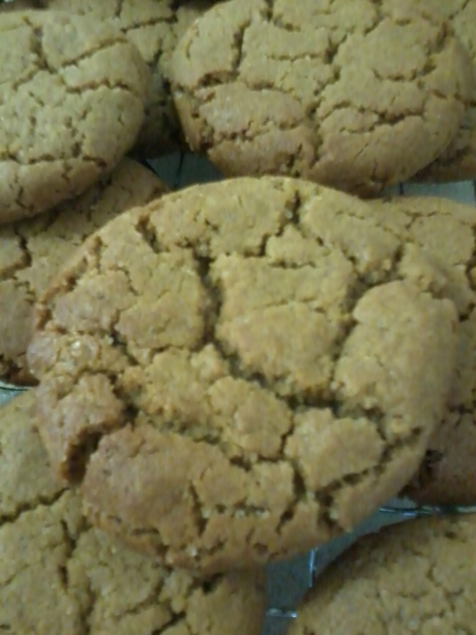 Blackstrap Ginger Cookies